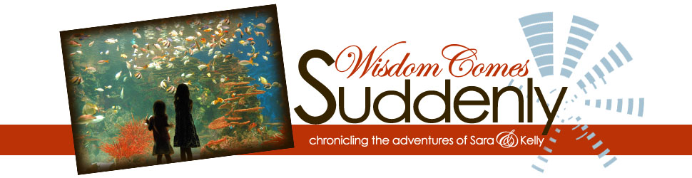 Wisdom Comes Suddenly